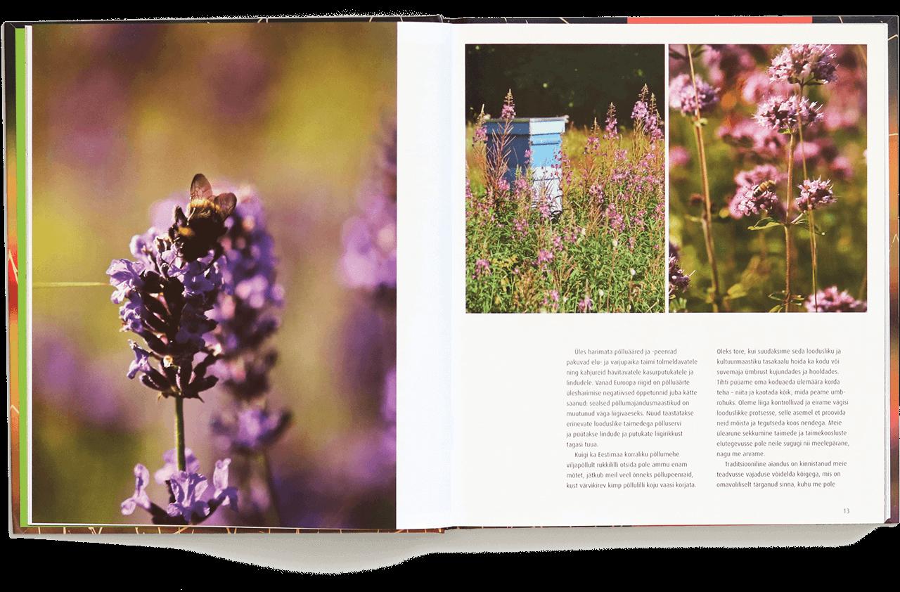 Lilleniit ja kõrrelised minu aias raamatu sisevaade